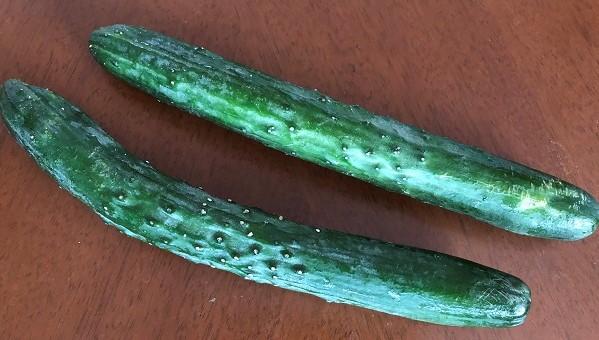 radishboya cucumbers