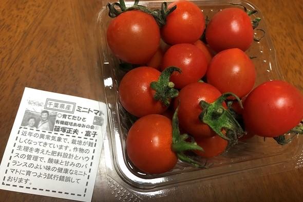 radishboya tomatos