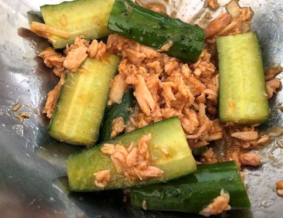 kit oixis cucumber-ginger-tuna-sauce