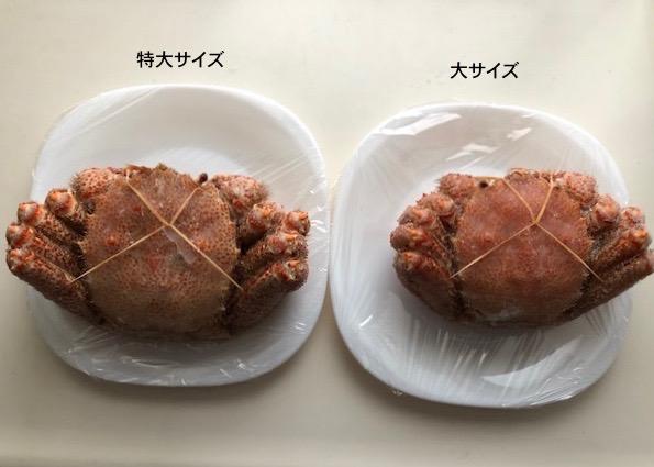 北海道ぎょれんの毛ガニ