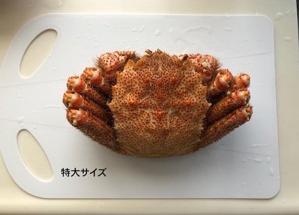 北海道毛がに特大800g